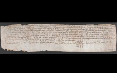 Documents carolingis en els llocs més insospitats